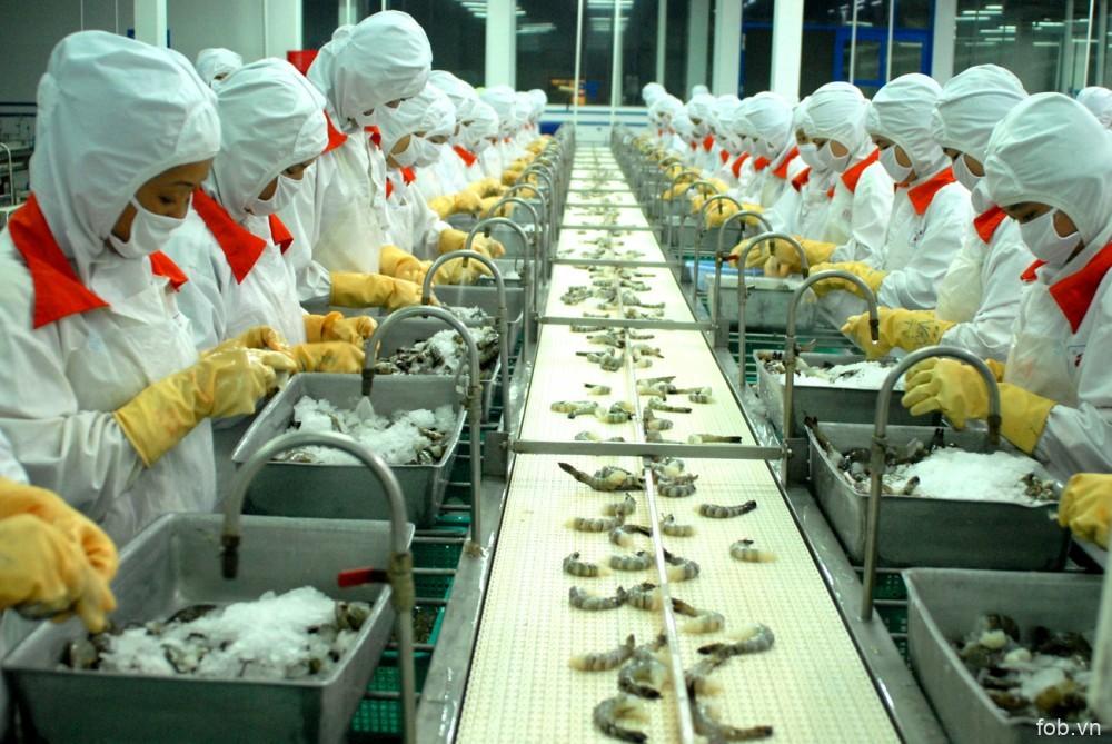 越南新鲜虾在澳大利亚市场迎来广阔出口机遇