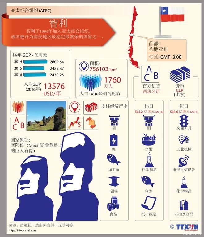 图表新闻:亚太经合组织成员经济体――智利